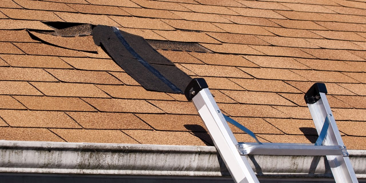 Get Specialists for Your Flat Roof Repairs