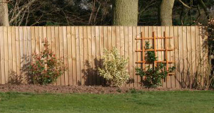 What is the Best Material for Fencing?