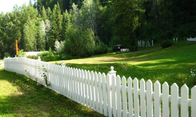 Enjoy the Fine Qualities Offered by Expert Fencing Companies