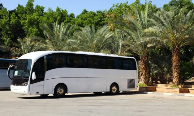 Booking the Best Coach for Your Outing